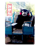 top_kumamon2[1].jpg